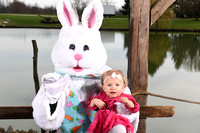 Easter bunny 18-6347